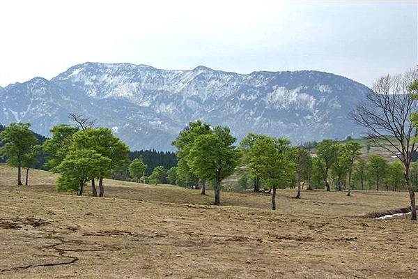 鳥甲牧場からの苗場山