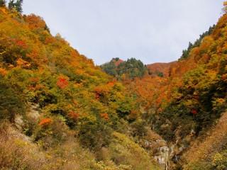2016年10月21日 秋山林道周辺