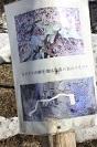 _MG_5363 笹原地図