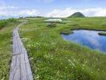 苗場山山頂の池塘群