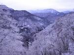 苗場山と中津川(津南町)